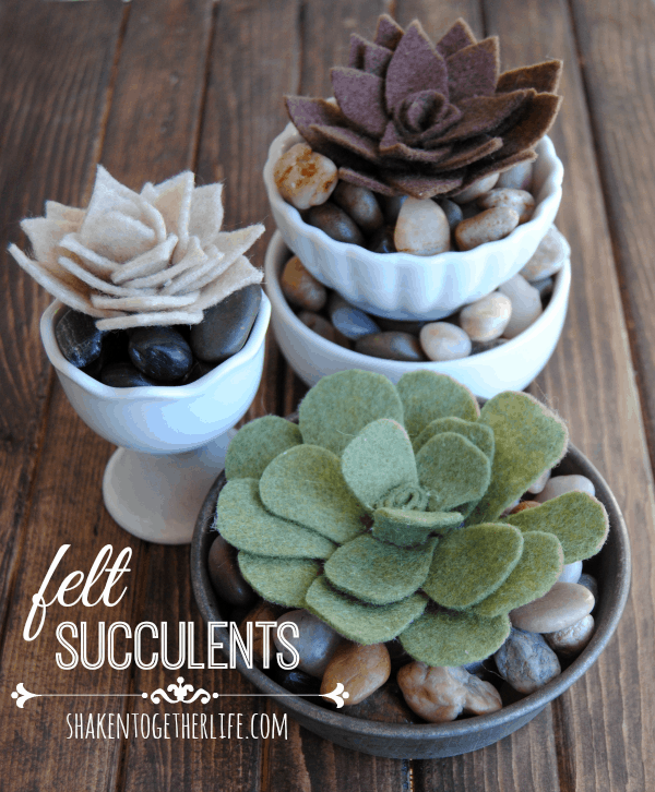 DIY felt succulents trio