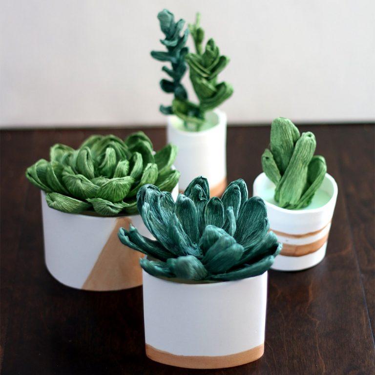 Succulents Square
