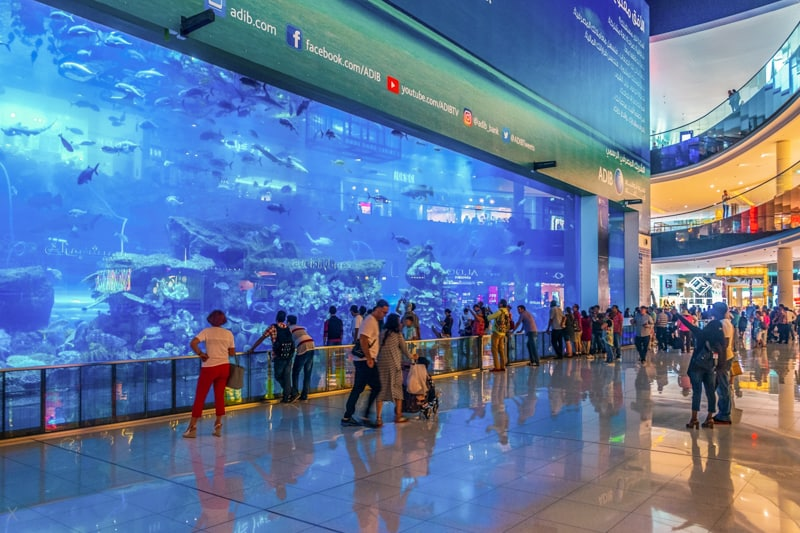 Dubai Mall Aquarium in Dubai, Arab Emirates